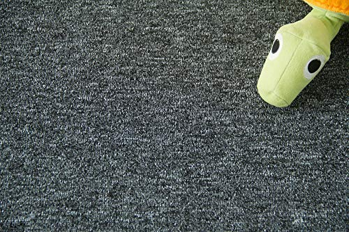 Steffensmeier Teppichboden Meddon Meterware | Auslegware für Kinderzimmer Wohnzimmer Schlafzimmer | Anthrazit, Größe: 400x500 cm