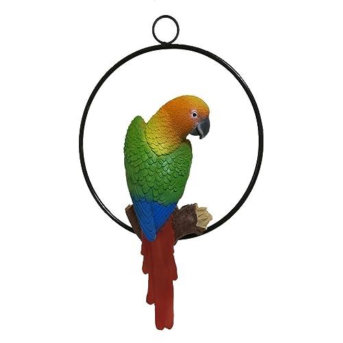 Hanging Parrots: Amazon com