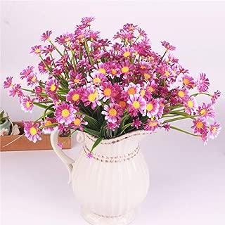 Best purple daisy like flower Reviews