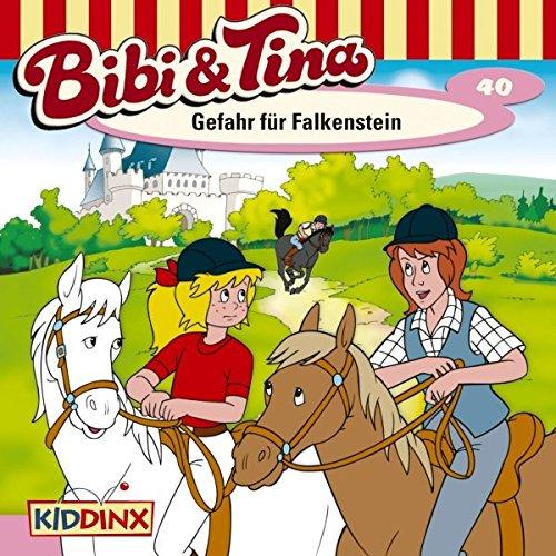 Gefahr für Falkenstein audiobook cover art