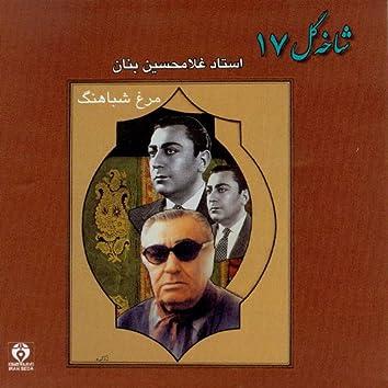 Shakheh Gol 17 (Morgh -e- Shabahang)