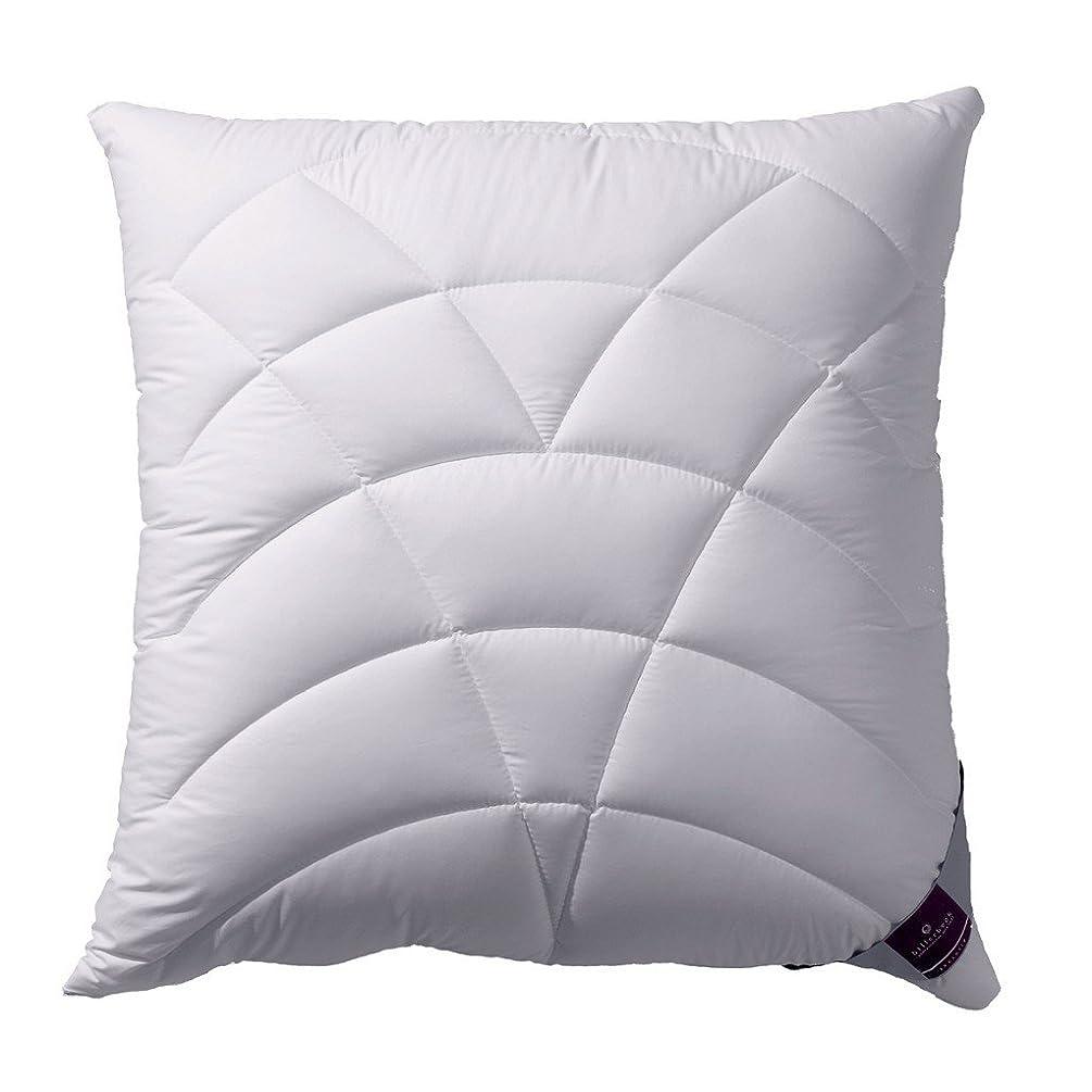 スラムウェブ膨らみBillerbeck Cushion 120 Climatraum、AIRTECmicro(70%ポリエステル/ 30%Tencel)、ベージュ、80 x 80 cm