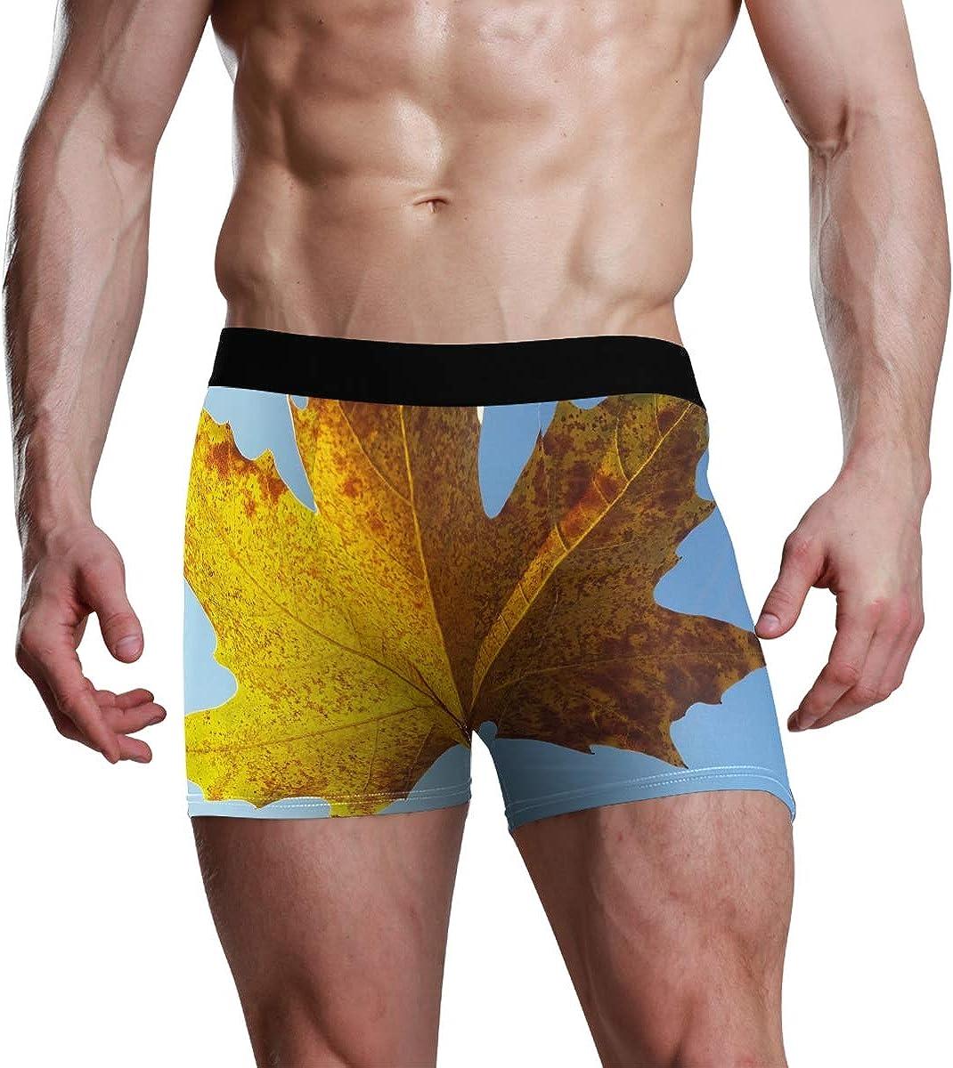 Art Briefs Print Leaf Maple Autumn Yellow Sunshine Underwear Boxer Soft