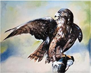 Paint By Numbers Hawk Hunting Oil painting Digital Coloring Oil Painting Canvas With Inner Frame Hand-Painted Painting For...