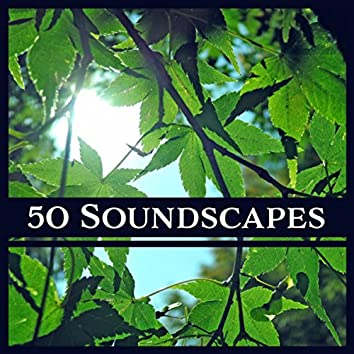 50 Soundscapes: Zen New Age & Nature Sounds for Meditation, Yoga, Spa & Deep Relaxation, Healing Therapy Music
