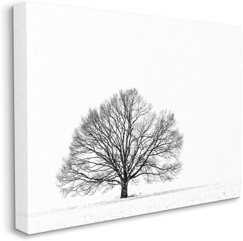 Stupell Industries Winter Tree Silhouette and Max 50% OFF Black Mesa Mall Landsc White