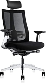 Ergonomic Adjustable Office Chair, Computer Desk Chair with Lumbar Support - High Back with Breathable Mesh, 3D Armrest, Comfortable Glide Seat Cushion and Aluminum Alloy Frame, Recliner