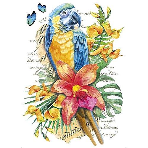 Color Bügeltransfer, DIN A4, filigran ohne Hintergund, tropische Tiere   Textilien wie T-Shirts & Taschen mit Bügelmotiven verzieren   Transfer-Bilder aufbügeln   DIY Textildesign (Papagei)