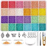 Queta Kit de inicio de cuentas de vidrio 19200 piezas 2 mm 12/0 Bolitas colores para accesorios de joyería de pulsera de bricolaje (Tipo 1)