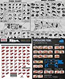 All 4 Meat Chart Posters (Beef Cuts, Purchasing Pork, Old Time Butcher Shop Beef, Old Time Butcher Shop Pork