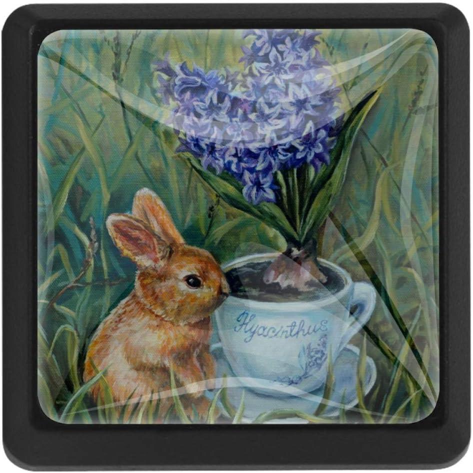 Shiiny Rabbit and New item Hyacinth Square Drawer K Knobs Max 74% OFF - Handles Pulls