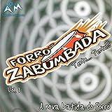 A Nova Batida do Forró, Vol. 1...