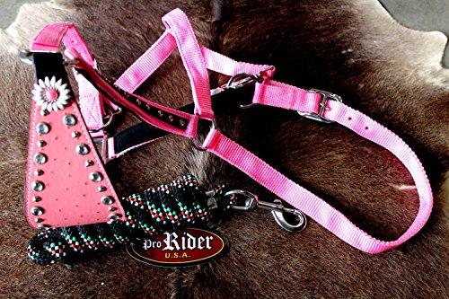 PRORIDER Noseband Tack Bronc Leather Halter Tiedown Lead Rope 280710