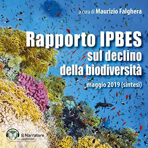 Rapporto IPBES sul declino della biodiversità cover art