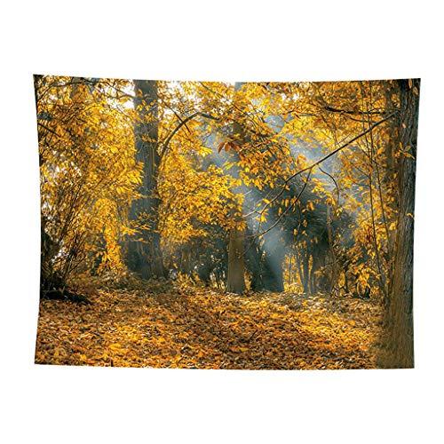 Huacat Wandteppich Wald Landschaft Wanddekor Wandteppiche Tagesdecke Sonnenstrahlen bäumen Fluss reflektieren Natur Fotographieaus Weiches Mikrofaser Stoff Kein Verblassen