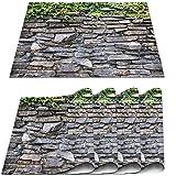 COFEIYISI Manteles Individuales Juego de 4,Piedra Ladrillo Hojas Verdes de Hiedra trepando por Rocas de mármol rústico Muro de Piedra Salvamanteles para la Mesa de Comedor de Cocina 30x45cm