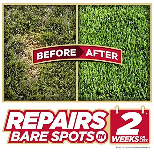 Pennington Bare Spot Repair Mix, All Climates