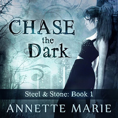 Chase the Dark audiobook cover art