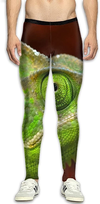 Dfdffrfrwqq Lizard of Dementia.JPEG Men's Active Basic Athletic Skinny Track Pants