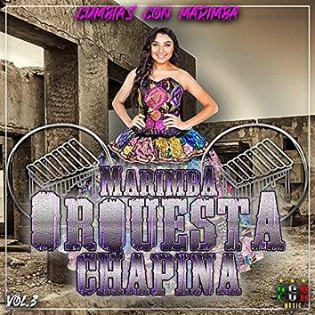 Cumbias Con Marimba Vol. 3
