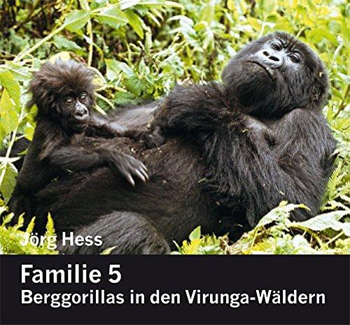Familie 5, Berggorillas in den Virunga-Wäldern