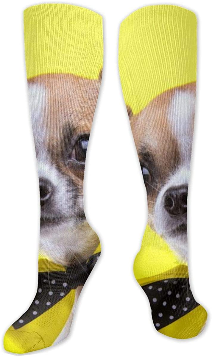 Chihuahua Dog Cute Knee High Socks Leg Warmer Dresses Long Boot Stockings For Womens Cosplay Daily Wear