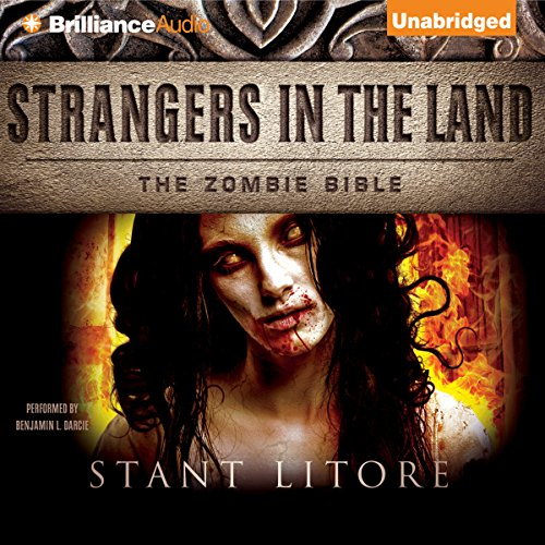 Couverture de Strangers in the Land