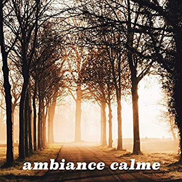 Ambiance calme