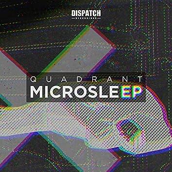 Microsleep