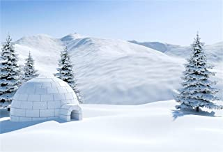 CSFOTO 8x6ft Background Winter Landscape with a Snow Igloo Photography Backdrop Snowy Landscape Adventure Outdoors White World Snow House Snow Covered Vacation Photo Studio Props Vinyl Wallpaper