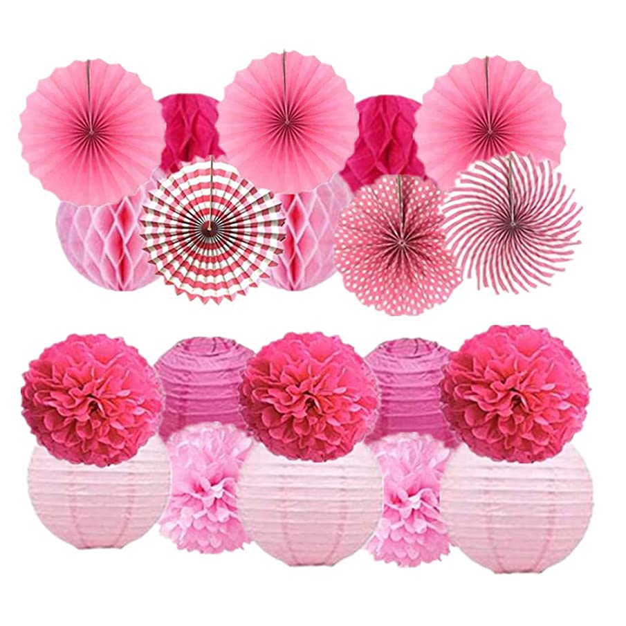 20Pcs Tissue Paper Pom Poms Pink Flowers Paper Honeycomb Balls Paper Lanterns Hanging Paper Fans for Wedding, Birthday, Baby Shower, Nursery, Bridal Shower Decor