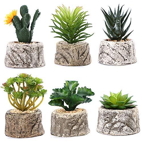 Soleebee 6 Piezas Surtidas En Macetas Decorativas Suculentas Artificiales Plantas Verdes Faux Cactus Suculentas con Olla Gris para Decoración