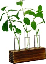 Ivolador 3 Crystal Glass Test Tube Vase Flower Pots for Hydroponic Plants Home Garden Decoration