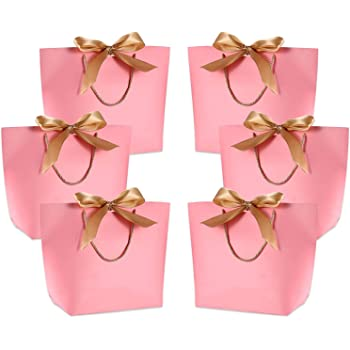 Blush Pink Gift Bags 24 Pack Glossy Pink Paper Bags with