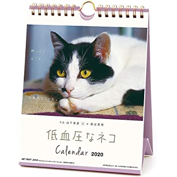 アートプリントジャパン 2020年 低血圧なネコカレンダー vol.020 1000109229