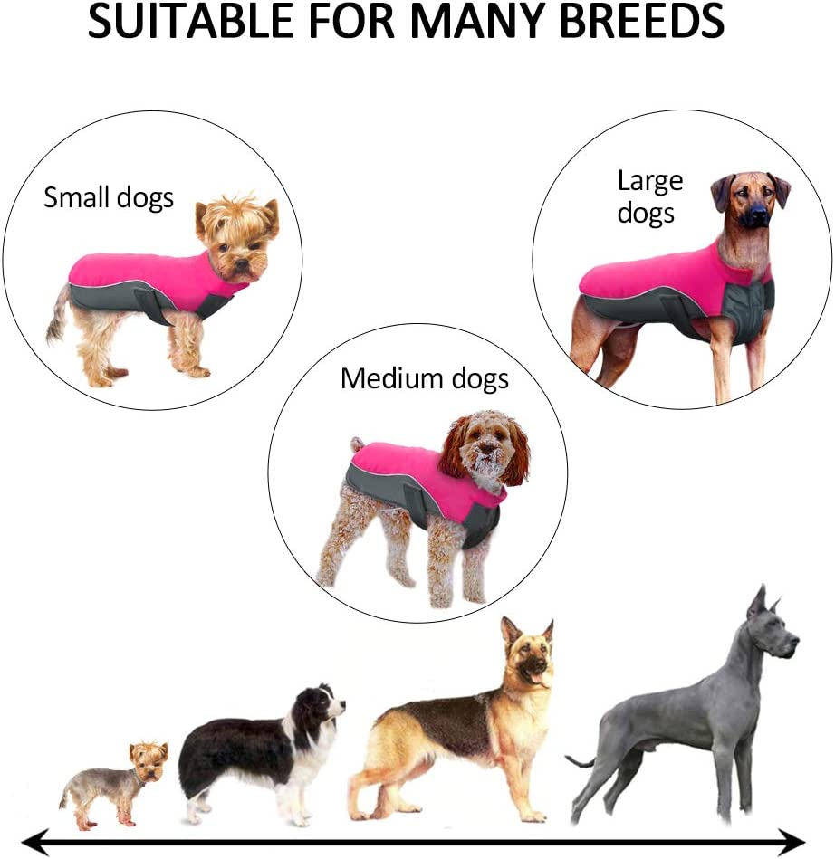 14 for Small Medium Large Dogs Didog Reflective Dog Winter Coat Sport Vest Jackets Snowsuit Apparel