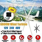 LiRongPing 6000W Wind Power Turbines Generator 12/24/48V White Black Wind Blade...