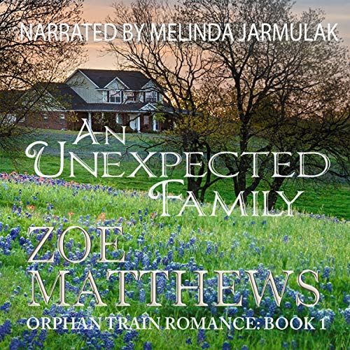 An Unexpected Family audiobook cover art