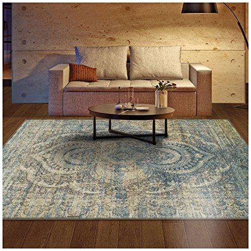 Superior Designer Salford Area Rug, 8' x 10', Blue-beige