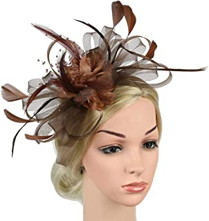 Women Fascinators Hat Flower Feather Net Mesh Kentucky Derby Tea Party Handmade Headwear with Hair Clip And Hairband,Brown