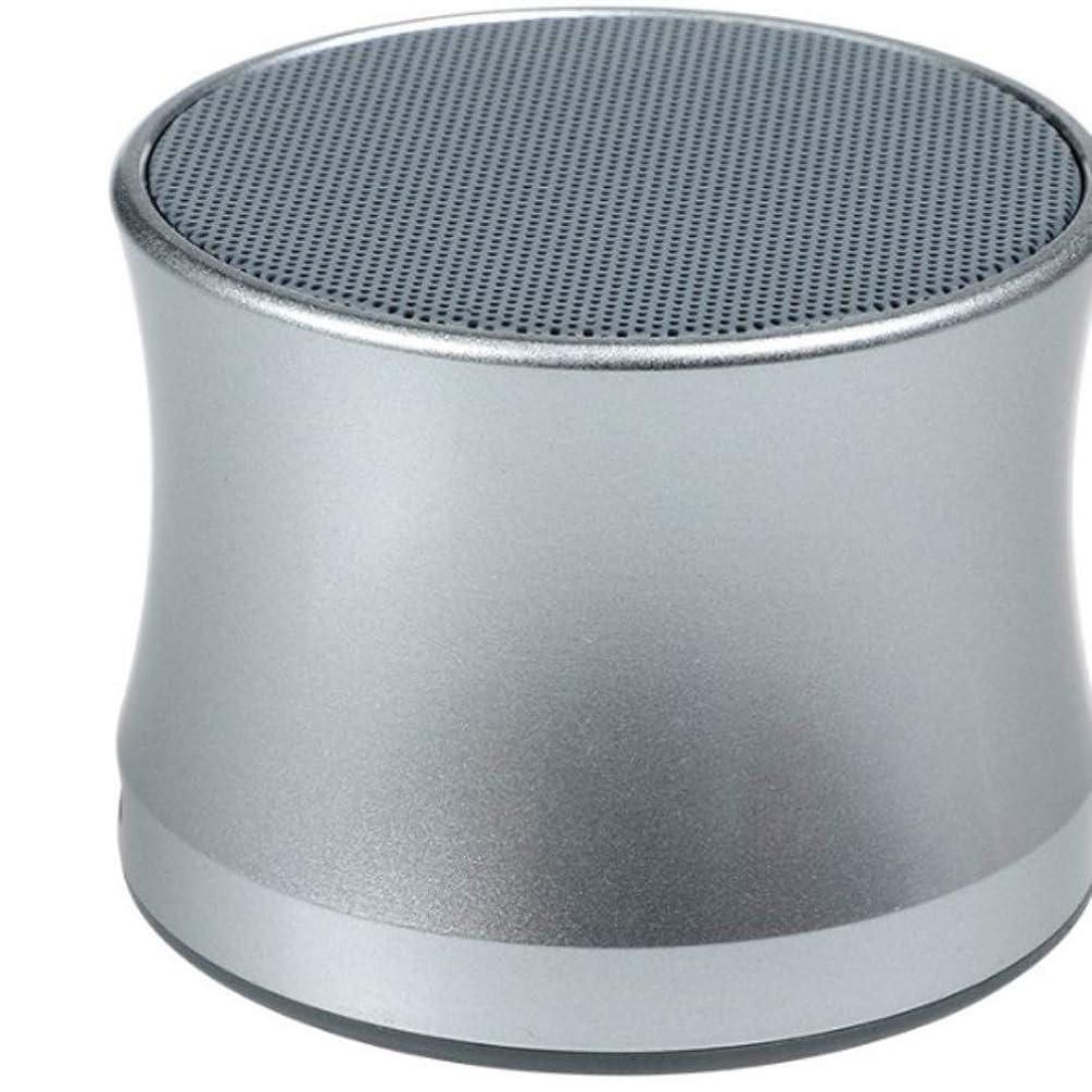 正確男性摂氏ワイヤレス Bluetooth スピーカー、金属ミニキャノンスピーカー、サブウーファーコンピュータ電話屋外ポータブルギフトオーディオ,Silver