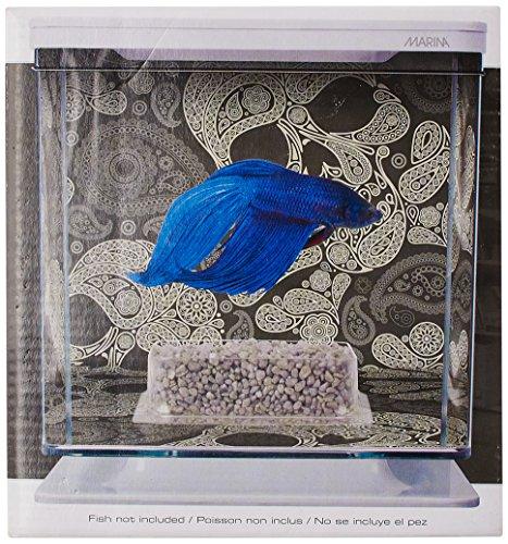 Marina Betta Kit Aquarium für Kampffische, Totenkopf-Design, 2 l - 3