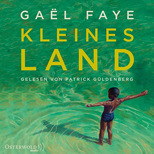 Kleines Land audiobook cover art