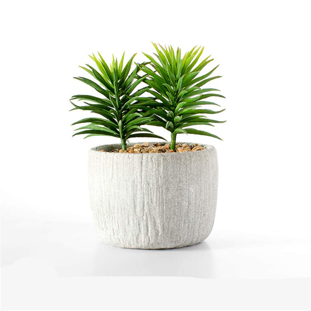 ZYFBN Maceta pequeña de cerámica para Escritorio, macetas de ...
