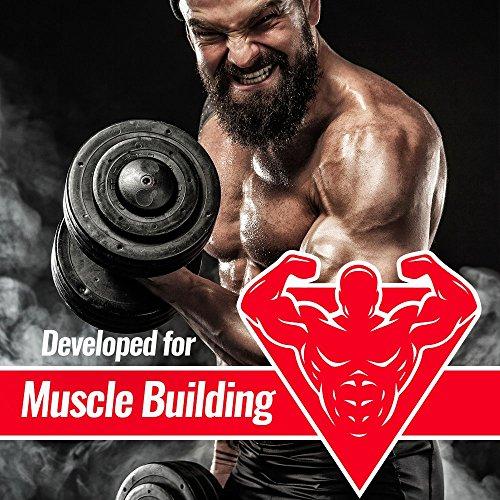 BWG Amino 20.000, Protein Tabletten, Muscle Line, 900 Tabletten, 1er Pack (1 x 1080g Beutel) - 3