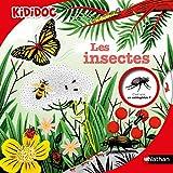 Les Insectes - Kididoc - Livre animé - Dès 6 ans (47)