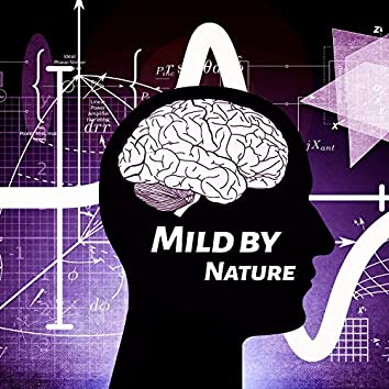 Mild by Nature - Enlightenment with Science, Science without Stress, Good Result Exam, Science Is Heavy, Rest Before Exam, Evening Replay