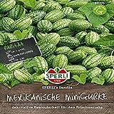 Sperli Gemüsesamen Gurken Mexikanische Minigurke 'Sandia'