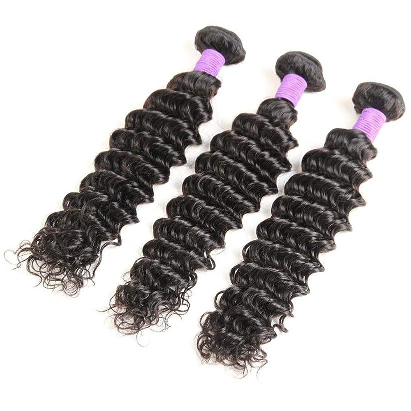 最も遠い発信科学者Yrattary ブラジルの巻き毛ディープウェーブナチュラルカラーヘアエクステンション100%本物の人間の髪の毛の女性女性のかつらレースのかつらロールプレイングかつら (色 : 黒, サイズ : 24 inch)
