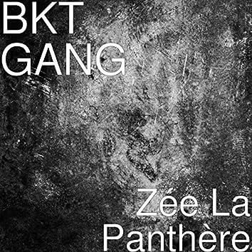 Zée La Panthère
